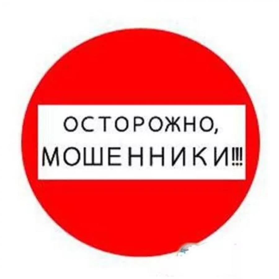 ВОрле сторонники «Единой России» встали назащиту пожилых людей отмошенников