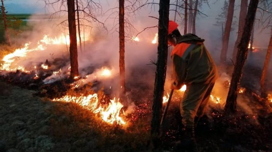 Тарутинские пожарные напоминают о том, как важно соблюдать правила пожарной безопасности в лесах
